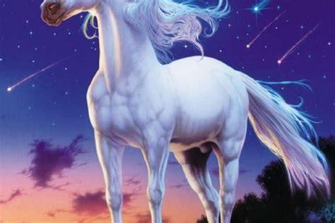 imagenes con unicornios el unicornio una criatura de amor puro punt magic