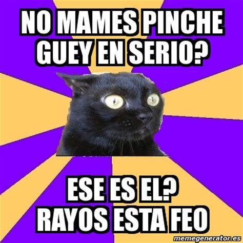 Anxiety Cat Meme Generator - meme anxiety cat no mames pinche guey en serio ese es