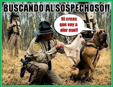 imagenes chistosas malcriadas dichos graciosos argentinos imagenes divertidas con frases