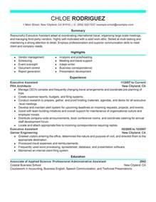 examples of virtual resume 1 - Virtual Resume