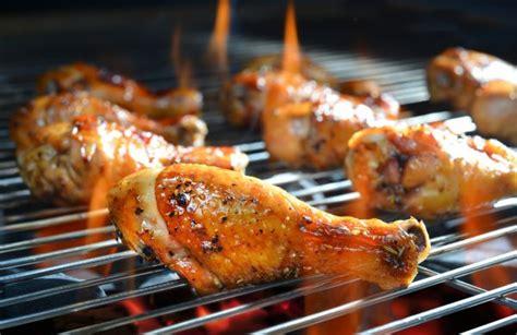 berbagai gambar ayam  indonesia