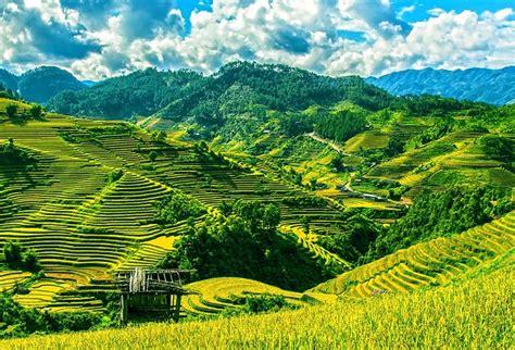 Lotus Travel Crib Australia by Travel Plan Things To Do In Hanoi City Granite Net