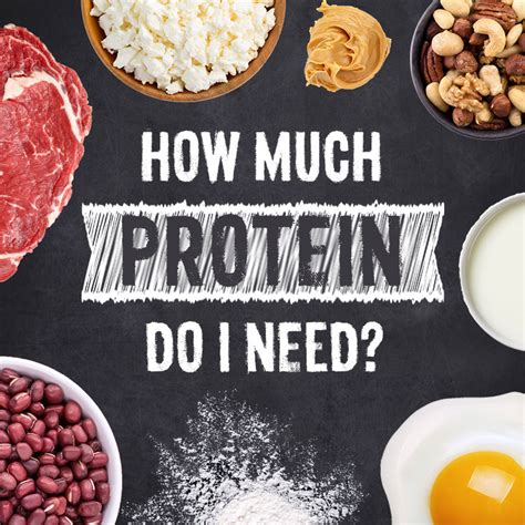 What Does Much Protein Do How Much Protein Do I Need Swanson Health Products