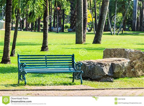 what is green bench green bench in palm garden background royalty free stock