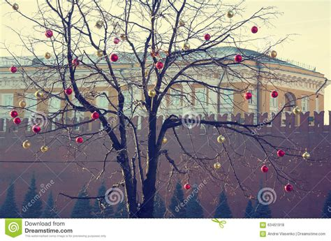 Bright Colored Tree Decorations by Bright Colored Decorations On A Defoliated Tree