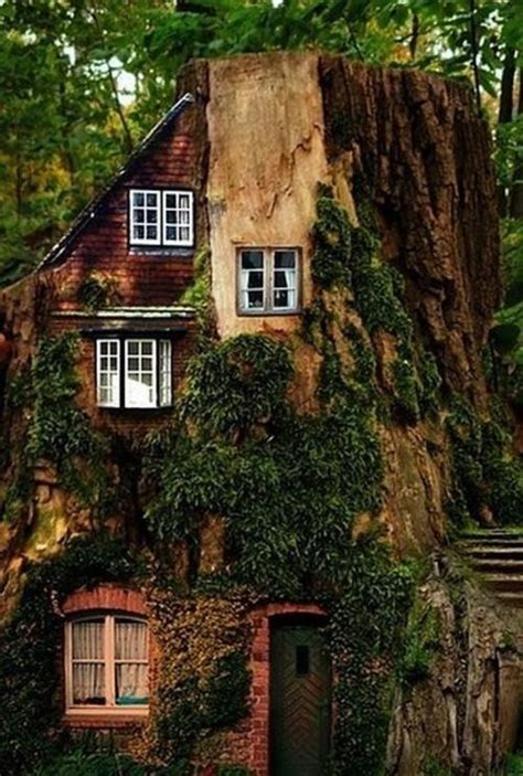 forest home beautiful sceneries pinterest