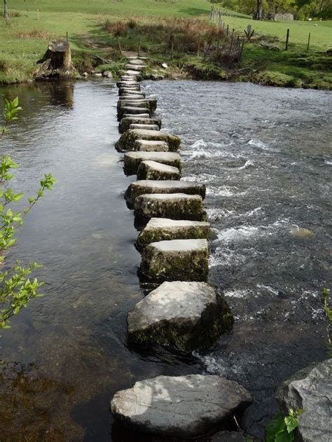 Stepping Stones Detox by 73 Best Images About Stepping Stones On