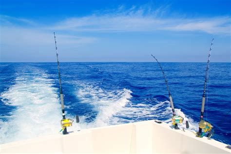 boat storage orange beach offshore fishing big adventure charters inc orange