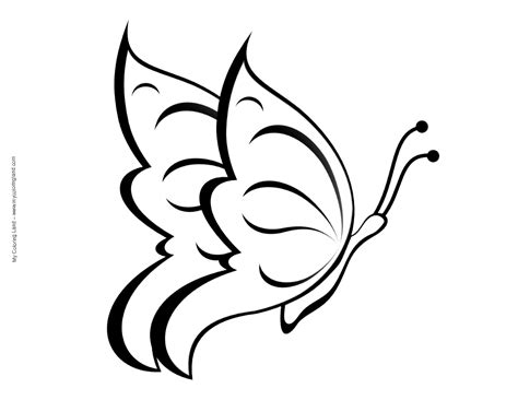 coloring pages of small butterflies butterfly my coloring land