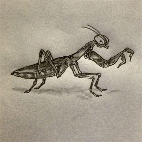 praying mantis tattoos praying mantis sketch by ranz insectisdes