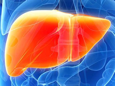 liver disease niddk