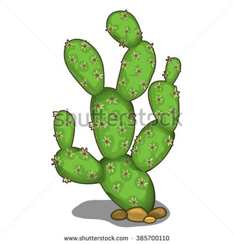 prickly pear flower clipart clipground
