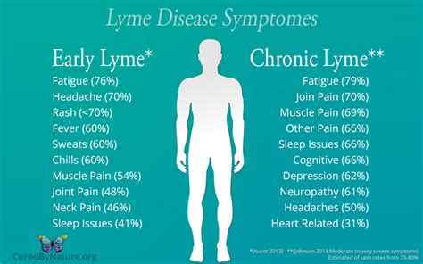 chronic lyme disease health news tips trends image gallery lyme disease cures