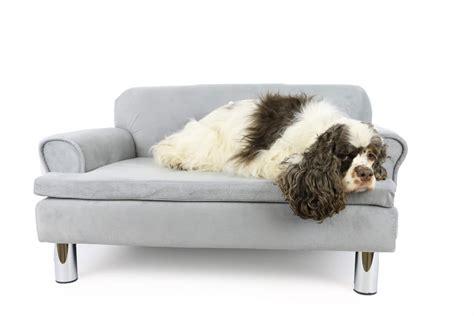 canape chien canap 233 pour chien zolia liloe panier et corbeille