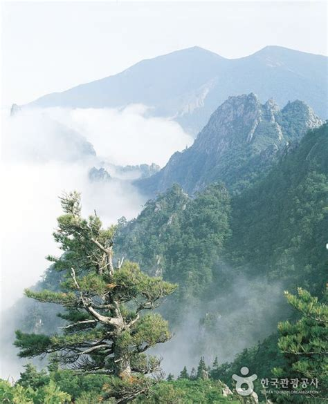 seoraksan national park wikiwand 25 best ideas about seoraksan national park on