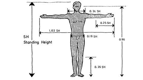 ergonomic pattern what is ergonomics dohrmann consulting