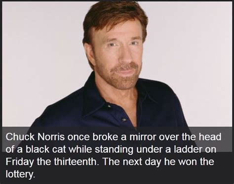 chuck norris best facts these chuck norris facts might change your 24 pics