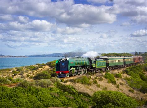 things to do in victor harbor official tourism site