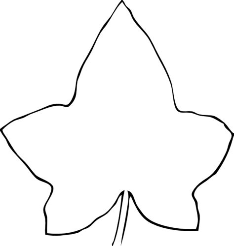 simple leaf template line drawing leaf clip at clker vector clip
