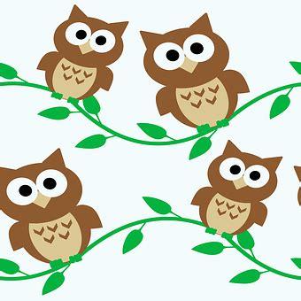 Animasi Burung Hantu Owl Bird owl backgrounds textures free pictures on pixabay