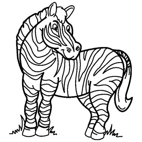 printable zebra coloring pages zebra coloring pages 3 coloring pages to print