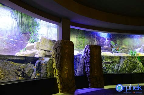 Lu Led Aquarium 2015 chengdu aquarium led light project orphek