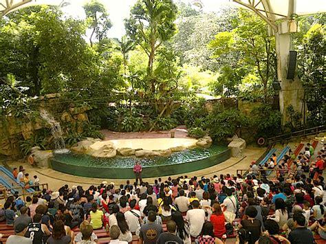 Design Home Audio Video System singapore zoo amphitheatre gets fbt line array front of