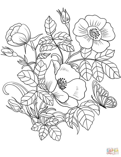 Flower Coloring Pages Printable by Flowers Coloring Page Free Printable Coloring Pages