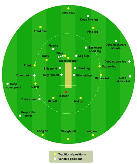 diagram of cricket field cricket pitch size diagram images