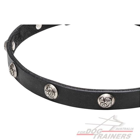 Leather Collar With Hello 20 Mm X 45 Cm walking collars thin decorated leather collar