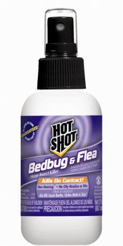 raid bed bug fogger raid fogger kill bed bugs rat pest control london