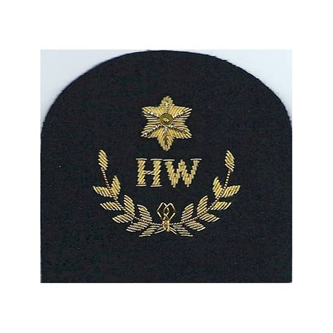 royal marines officer insignia royal marines hw in wreath star heavy weapons marines