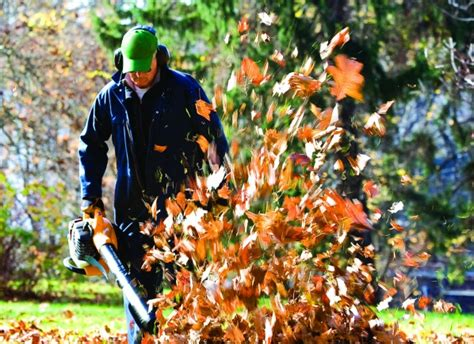 fall cleanup landscaping cleveland landscapers h m landscaping
