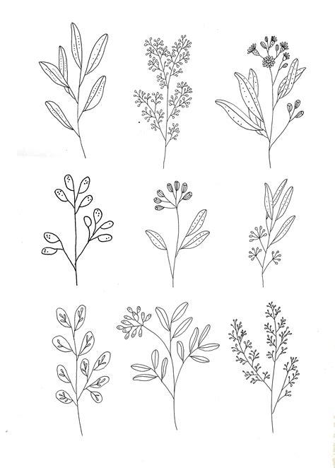 pattern sketches pinterest botanics by ryn frank www rynfrank co uk pinteres