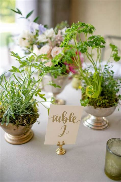 25 best ideas about potted plant centerpieces on