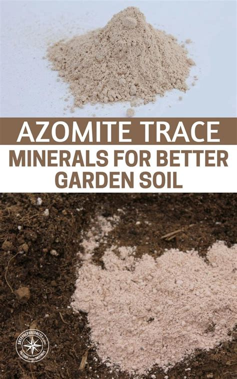 azomite trace minerals for better garden soil