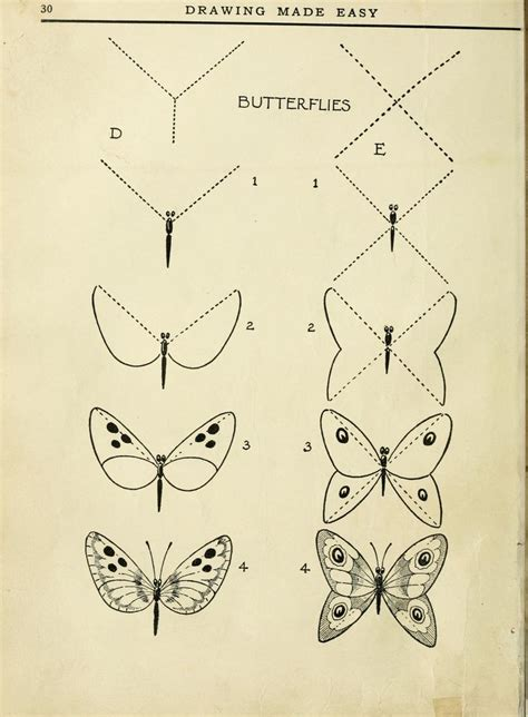 libro drawing made easy beautiful drawing made easy butterflies art