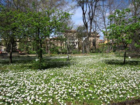 giardini dei semplici primavera al giardino dei semplici firenze notizie