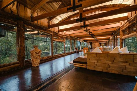 wallmarks tree house hotels treehouse hotel in chile nothofagus hotel spa