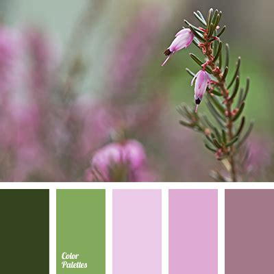 dusty color quot dusty quot lilac quot dusty quot pink color of spruce green