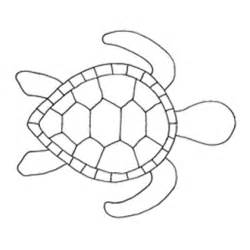 turtles outline turtle template a image by 61352151511 roblox updated