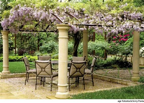 pergola dictionary definition pergola defined