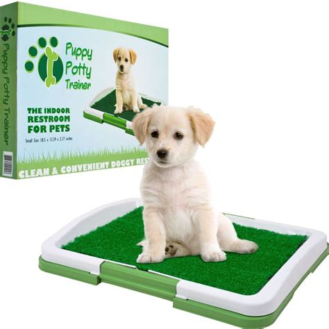 my potty trained dog is peeing in the house puppy potty trainer grass mat dog training indoor outdoor pee pad patch green ebay