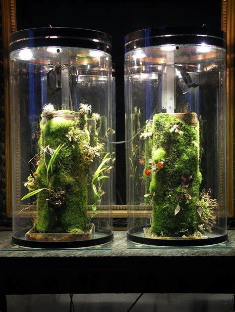 nano vivarium indoor grow lights vivarium