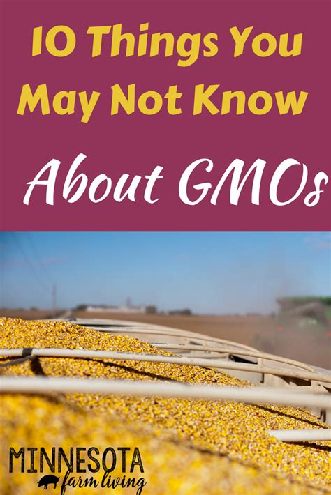 10 things you may not know about adding color to your 10 things you may not know about gmos