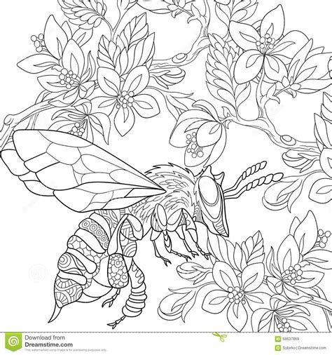zentangle stylized bee insect stock vector image 68637869