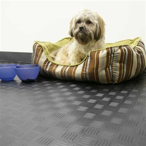 rubber matting for kennels kennel flooring and pet kennel flooring rubber flooring and matting