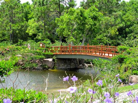 Morikami Museum And Japanese Gardens by Morikami Museum And Japanese Gardens Boca Raton News