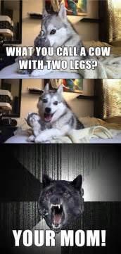 Phteven Dog Meme