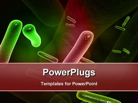 powerpoint themes bacteria bacteria powerpoint template